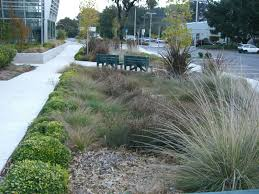 public spaces landscape company, bay area ca