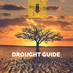 Click here to get  our drought guide!